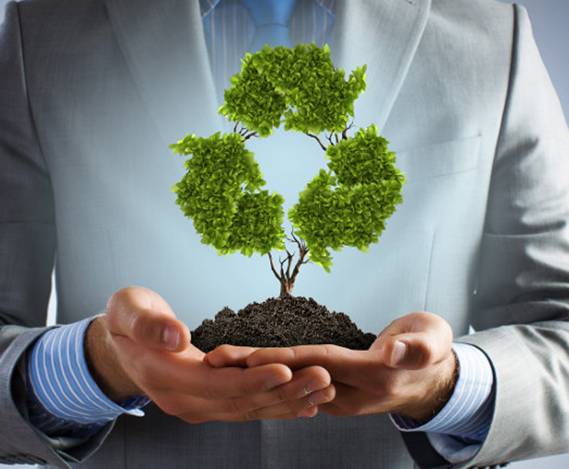 Are You Considering Introducing Corporate Social Responsibility for Your Business?